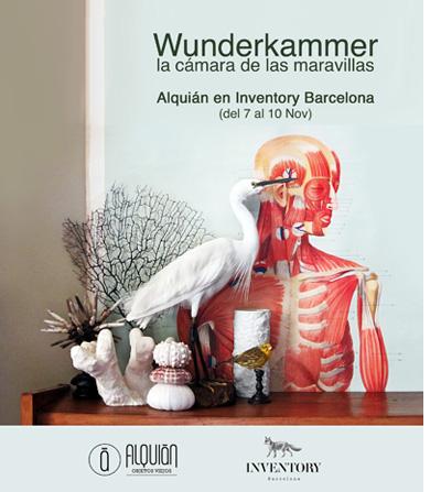 WUNDERKAMMER-modulo-web