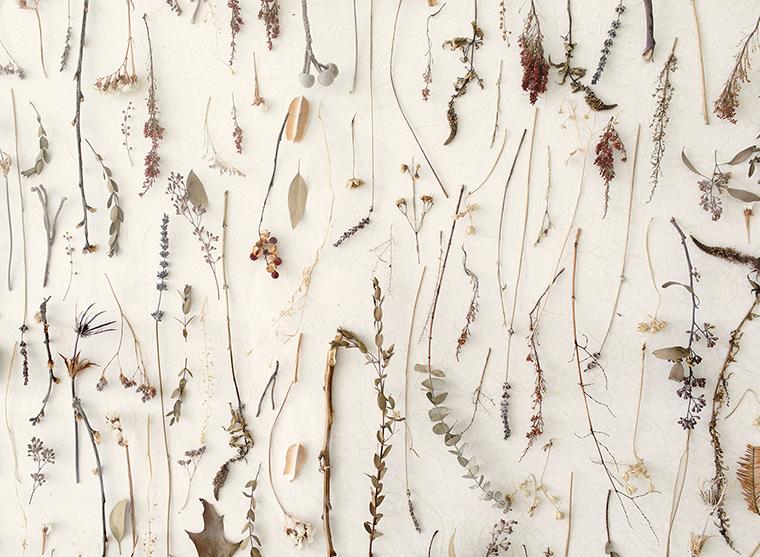Mural flores secas 2